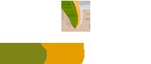 logo gotoperu